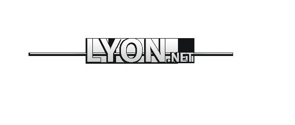 Référencement Lyon – Optimisations de site internet